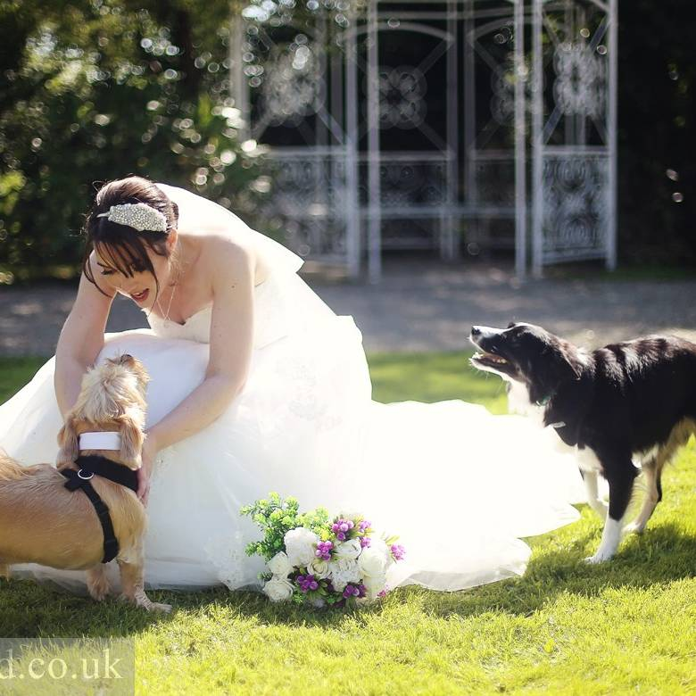 Broadway Country House wedding photos